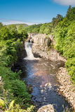 High Force Waterfall portrait Royalty Free Stock Photos