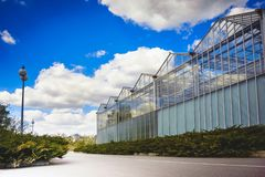 High glass greenhouses from a multitude of frames stock photo