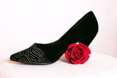 High Heels with a Rose. On a white background Royalty Free Stock Photos