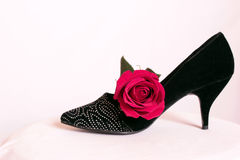 High Heels with a Rose. On a white background Stock Photos