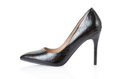High heel black crocodile shoe Stock Photos