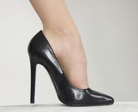 High Heel Shoe Royalty Free Stock Photo