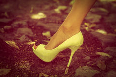 High heel shoe Stock Image