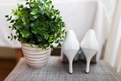 High heel shoes Stock Photos