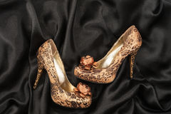 High-heeled shoes  lying on black  fabric Stock Photos