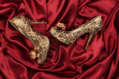 High-heeled shoes  lying on red  fabric Stock Photography