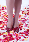 High Heels Over Supernatural Rose Petals Back Royalty Free Stock Photo