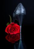 High Heels and rose. Black high heels shoe and red rose on a reflecting black surface royalty free stock image