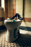 High heels on a toilet Royalty Free Stock Images