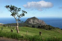 High Hill peak and lush countryside on St Helena Royalty Free Stock Image