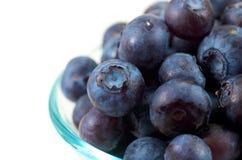 High Key Blueberries royalty free stock photo