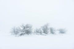 High key winter landscape Stock Photo