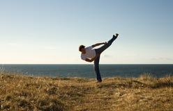 High-kick. Martial arts master high-kicking Royalty Free Stock Image