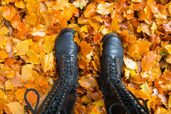 High leather boots Royalty Free Stock Images