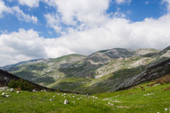 High limestone mountains landscape in Montenegro Bioc Royalty Free Stock Images