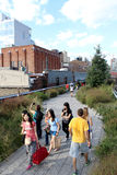 High Line.  New York City. Elevated pedestrian Park. NEW YORK CITY - SEPTEMBER 03: People at High Line Park in NYC on September 03th, 2013. The High Line is a Royalty Free Stock Photography