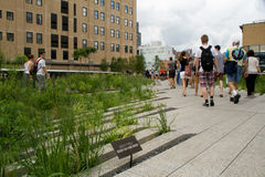 The High Line Park Royalty Free Stock Photos