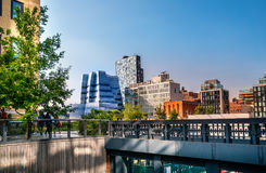 The High Line Park in Manhattan New York. The urban park is popular by locals and tourists built on the elevated train tracks. Manhattan, New York City - June Royalty Free Stock Photo