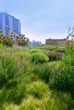 High Line Park Manhattan New York US Stock Photography