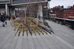 High Line park New Jork Stock Photos