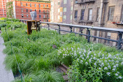 High Line Park, New York Stock Image