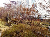 The High Line Stock Photo