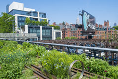 High line park in New York Royalty Free Stock Photos