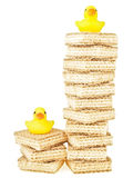 High and low duck Stock Photography