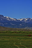 High mountain cattle pasture in front of Absaroka Mountain Range under summer cirrus and lenticular clouds near Dubois Wyoming Royalty Free Stock Photography