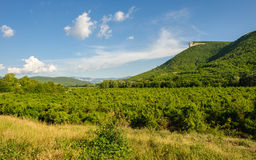 High Mountain Cliff In Crimea Royalty Free Stock Images
