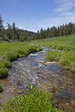 High mountain fishing stream Royalty Free Stock Images