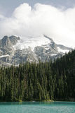 High mountain with glacier and lake Royalty Free Stock Photography