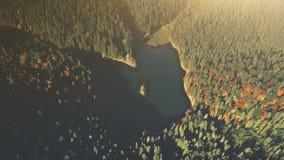 High mountain lake sunrise wood scene aerial view royalty free stock photos