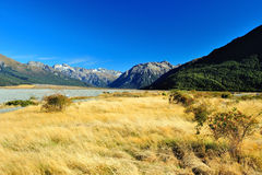 High mountain in New Zealand. National Park with Mountain in New Zealand royalty free stock photography