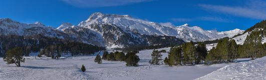 High mountain panorama in winter with snow, pine trees and blue sky. In january stock images