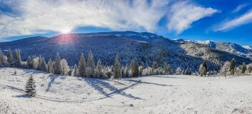 Mountain landscape winter - winter mountain panorama - alpine landscape with trees covered by snow and blue sky