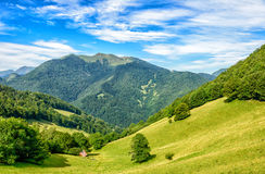 High mountain pasture and forestin the Pyrenees mountain Stock Images