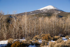 High Mountain Peak Great Basin Region Nevada Landscape Stock Photography