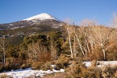 High Mountain Peak Great Basin Region Nevada Landscape royalty free stock images