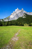 High mountain peak. And green meadow. Sixt Fer a Cheval France Stock Photo