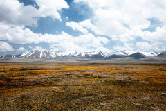 High mountain Son Kul lake valley. In early summer time, Kyrgyzstan Royalty Free Stock Images