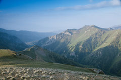 High mountain Son Kul lake valley in early summer time, Kyrgyzst Royalty Free Stock Images