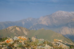 High mountain Son Kul lake valley in early summer time, Kyrgyzst Royalty Free Stock Photo