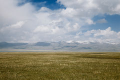 High mountain Son Kul lake valley Kyrgyzst. High mountain Son Kul lake valley in early summer time, Kyrgyzstan Royalty Free Stock Images