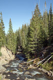 High Mountain Stream. A high mountain stream with rapids and rocky hillside royalty free stock images