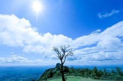 Beautiful mountain in Thailand royalty free stock image