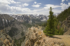 High mountain view at timberline Stock Photography