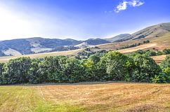High-mountainous agricultural land  in the Lori region of Armenia. High-mountainous agricultural land in a hot sunny day in the Lori region of Armenia Stock Image