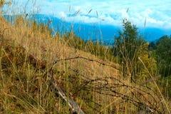 High-mountainous landscape Royalty Free Stock Photo