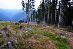 High mountains. (Krkonoše) in west Bohemia, Czech republic Royalty Free Stock Images